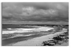 Coastal Maine Ocean