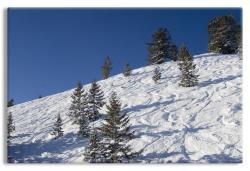 The Greatest Snow on Earth