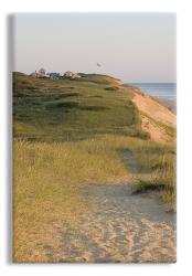 Cape Cod Sand Dunes Art