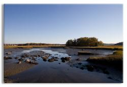 Tidal Marsh Canvas Wrap