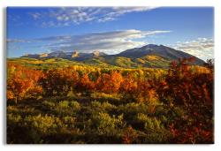 Colorado  Mountains Fall Foliage