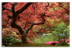 Mystical Garden with Japanese Maple