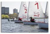 Sailboats Racing on the Charles River Boston