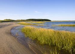 Great Island Wellfleet