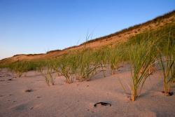 Cahoon Hollow Beach