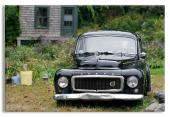 Antique Car Backyard Garden Scene